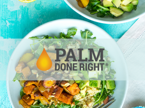 palm-done-right-featured-image